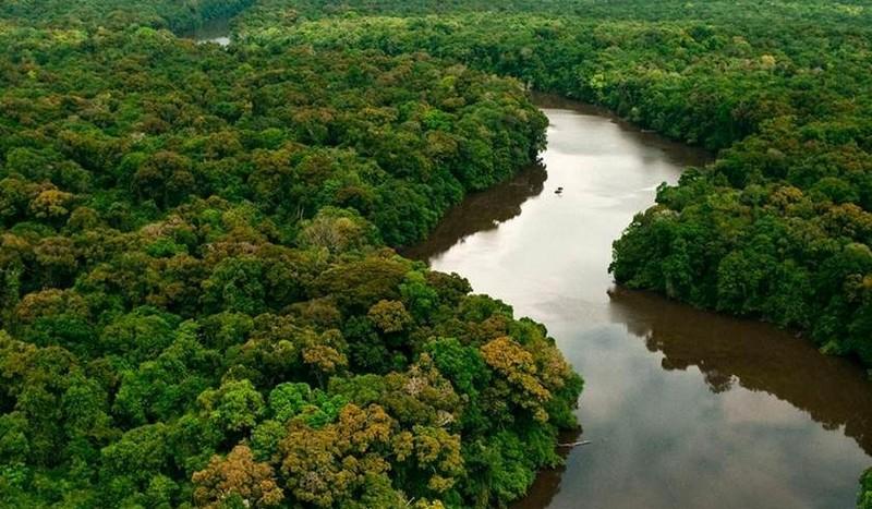 A nossa Amazônia