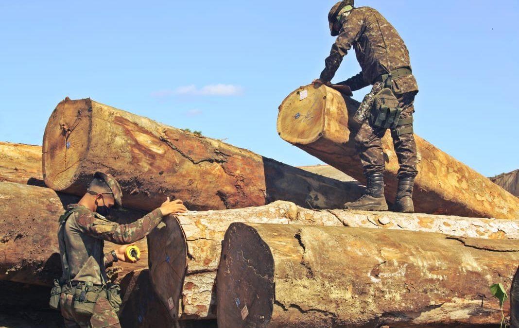 Operação Verde Brasil 2 avança no combate aos crimes ambientais na Amazônia