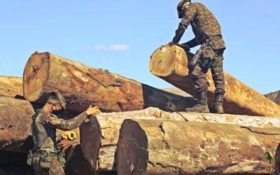 Coronel do Exército coordenará fiscalização ambiental do Ibama