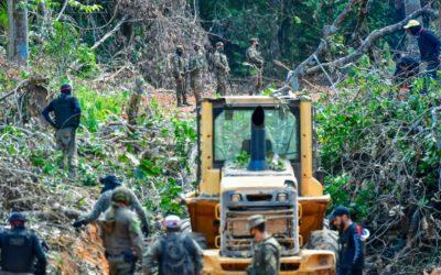 Operação Samaúma: Forças Armadas apreendem o equivalente a 60 caminhões de madeira em Rondônia